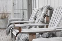 Guusje    Porch