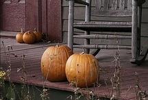 Guusje    Autumn