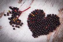 Czarny bez/Elderberry