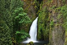 Waterfalls / Gorgeous waterfalls near my home and across the globe. Are any close to your home? / by Claudia Hatmaker