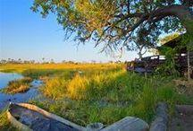 Botswana's Okavango Delta / Safari experiences in the Okavango