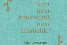 Türkçe Ünlü Sözler ve Şiirler