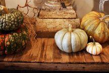 Fall celebrations / by Barbara Peschel