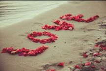 25 Creative Ways to Use Rose Petals for Weddings / We love seeing the different ways rose petals can be used in weddings and romantic occasions.