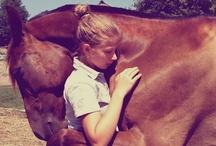 Horses, a woman's best friend
