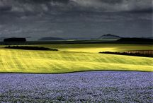 PHOT- Charlie Waite / landscape photographer / by RGC Higher Photography