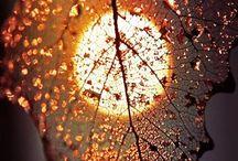 Arts .... Reflection / Shadow / Illusion / Dark / Lights