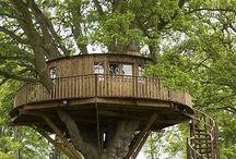 Case sugli alberi / Case sugli alberi per un relax tutta natura  ( ma ......queste case.....pagano IMU ,TASI,TARI.......???  )