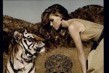 Safari attraction