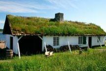 Ecolo : la toiture végétalisée / Innovante et écologique, la toiture végétalisée qui a fait son apparition en Allemagne devient de plus en plus répandue en France.