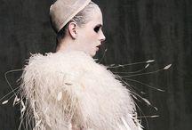 Fashionable feathers