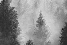 Zima. Winter. Mood.