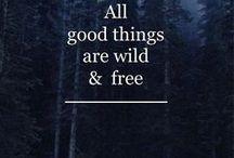 Quotes. Cytaty. Myśli. / Złote myśli, cytaty, dobre słowa.