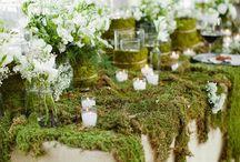 Wedding Ideas / by Candice Seich