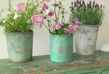 Favorite Shabby Chic / Have always loved mixing vintage and antique items for a cozy, homey look..love shabby chic colors too!   / by Linda Miller-Favorite Things