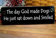 GOD LOVES DOGS