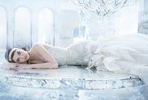 Lazaro  / by JLM Couture Flagship Salon