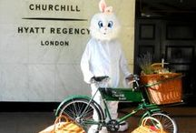 Hyatt Easter Bunny / the #Hyatteasterbunny was our this morning giving away sweet treats to guests and locals!