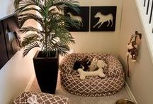 Great ideas for dog home / Home is where your dog is! <3 <3 <3