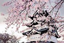 Japan / Nature, Fashion, People...