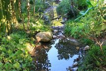 garden / Gardenconcept
