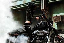 Harley Davidson / All Harley Davidson Cycles,Styles