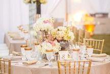 Bay Preserve at Osprey  , Sarasota County / Weddings in Osprey, Sarasota county, FL