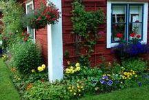 Gardenlicious