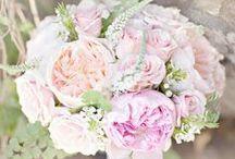 Flowers - light colours / Barevné kombinace květin - inspirace pro ozdoby na cukroví