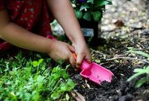 Explore The Great Outdoors / Enjoy the beautiful Florida weather with these fun outdoor activities for kids!