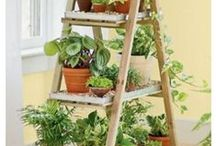 """Garten - home & garden design / You like to have you own """"Garden of Eden""""? Then follow this pinboard with a lot of (DIY) ideas for your beautiful paradise"""