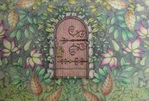 Colouring~ For Adults (JB) / A board full of pages from Johanna Basford's Secret Garden & Enchanted Forest