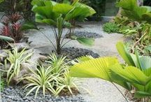 !  ~ Landscaping & Flower Gardening ~  ! / by Neusa Fujimoto