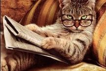 Literary Cats / by Jane Bond