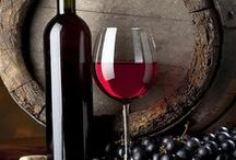 The Fermented Grape / Exploring the wide world of Vino!