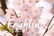 Frühling ♦ Spring / Frühlingsinspirationen ♦ Fotografieren im Frühling ♦ Spring ♦ Photography ♦ Fotografie