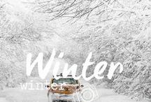 Winter ♦ Winter / Winterinspirationen ♦ Fotografieren im Winter ♦ Winter ♦ Photography ♦ Fotografie
