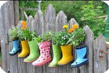 Growing & Gardening
