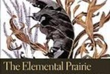 Prairies / A collection of resources about prairies.  For more information go to the Prairies Research Guide at http://uiuc.libguides.com/prairieresearchguide. / by INHS Library Resources