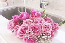 Rose  ~ COTTAGE