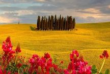 Tuscany we love / Tuscany region, captured by beautiful images pinned from web.  Enjoy the trip and...stay tuned! #italianlovestory