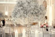 CMA Winter White Weddings / Ideas we like for Winter weddings and Parties