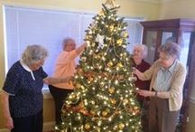 The Holidays at Arbor Acres / Here's a look inside Arbor Acres over the holiday season!