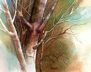Watercolors / watercolor paintings