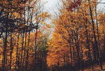 I ❤️ Autumn