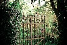 mysterious gardens