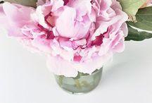 {Fancy Florals}