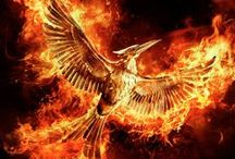 The Hunger Games / Every Revolution begins with a Spark