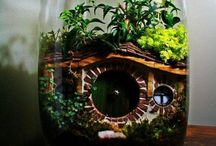 Terrariums/Water Gardens / by Chelsea Borcherding