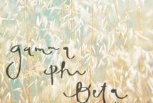 Gamma Phi Love :) / by Taylor Bogle